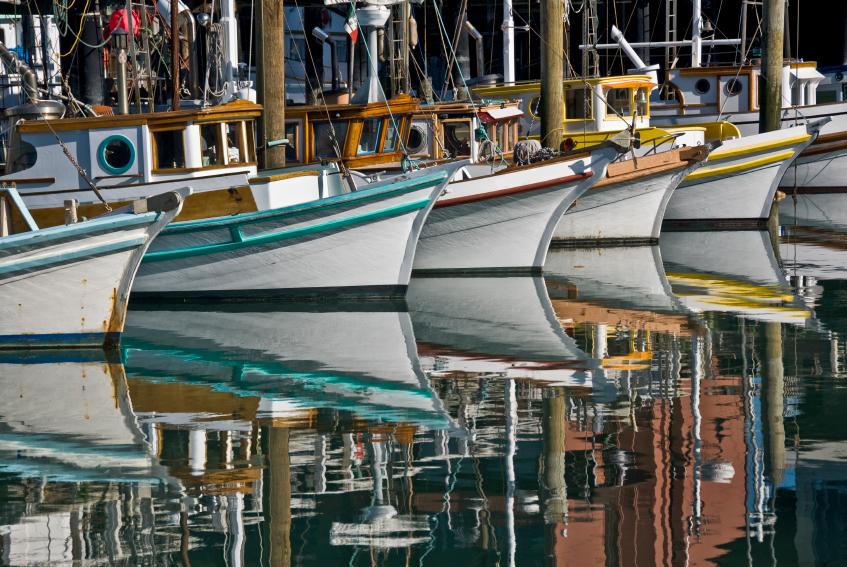 Port breton. Bateaux alignés de toutes les couleurs