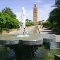 Pourquoi vous devriez voyager à Marrakech?