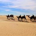Voyager en Tunisie, 4 choses à faire lors d'un voyage en Tunisie