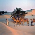 Les plus beaux coins de la Tunisie pour les vacances d'été 2013