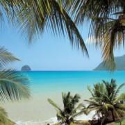 2 excellentes activités pour découvrir la Martinique !