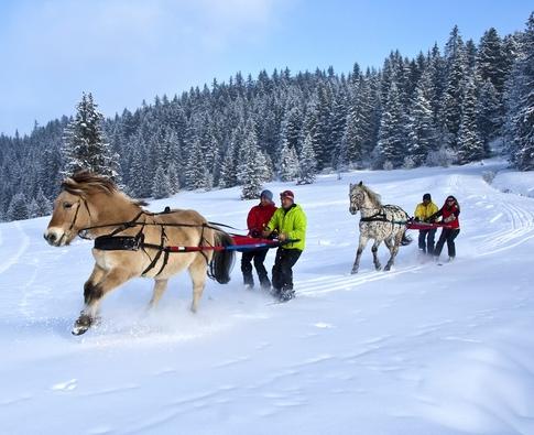 Andorre - ski joering