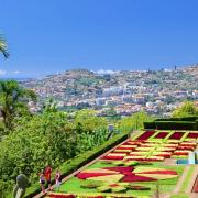 Visiter l'île de Madère, un jardin sur l'Atlantique