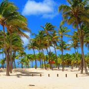 Les incontournables en Guadeloupe