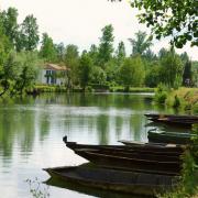 Marais Poitevin, immersion dans la Venise verte