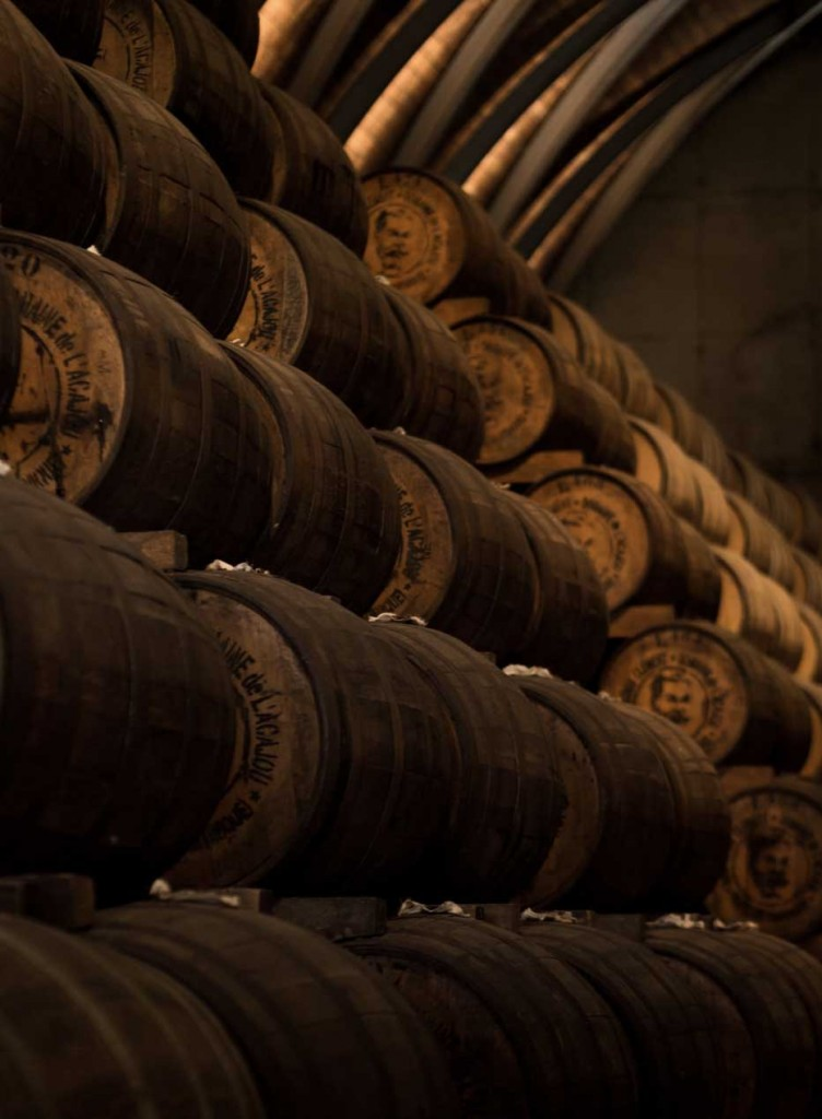Barils de rhum - distillerie habitation Clement